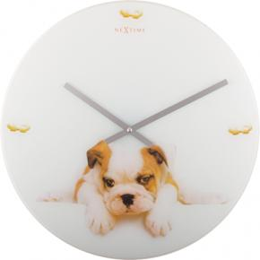 Image for product 'NeXtime 8136 Puppy [Ø43 cm, White/ Beige]'